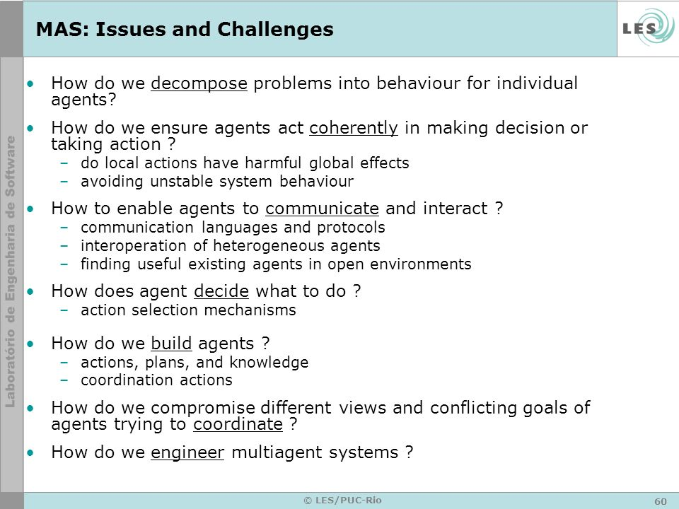 MAS: Issues and Challenges