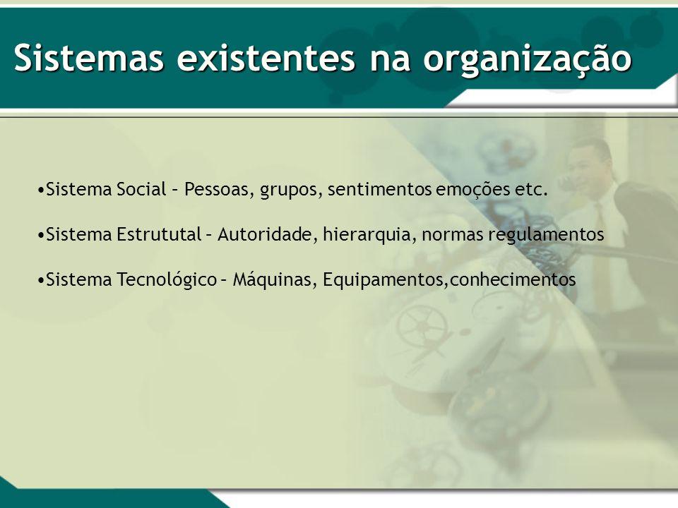 Sistemas existentes na organização