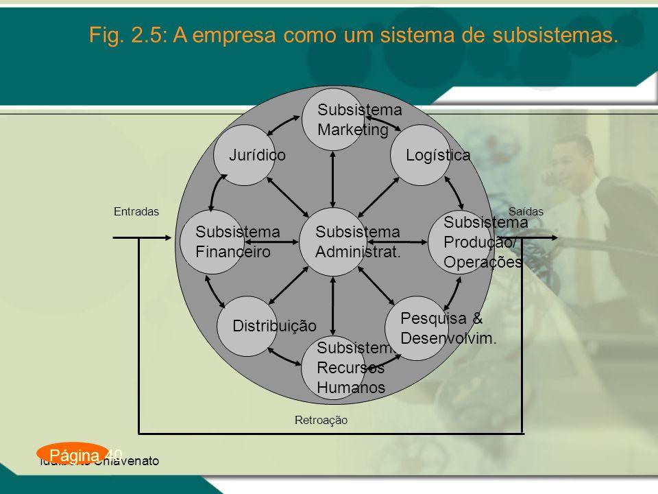 Fig. 2.5: A empresa como um sistema de subsistemas.