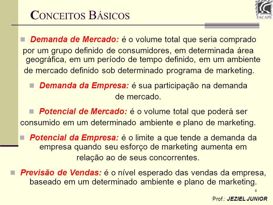 CONCEITOS BÁSICOS Demanda de Mercado: é o volume total que seria comprado.