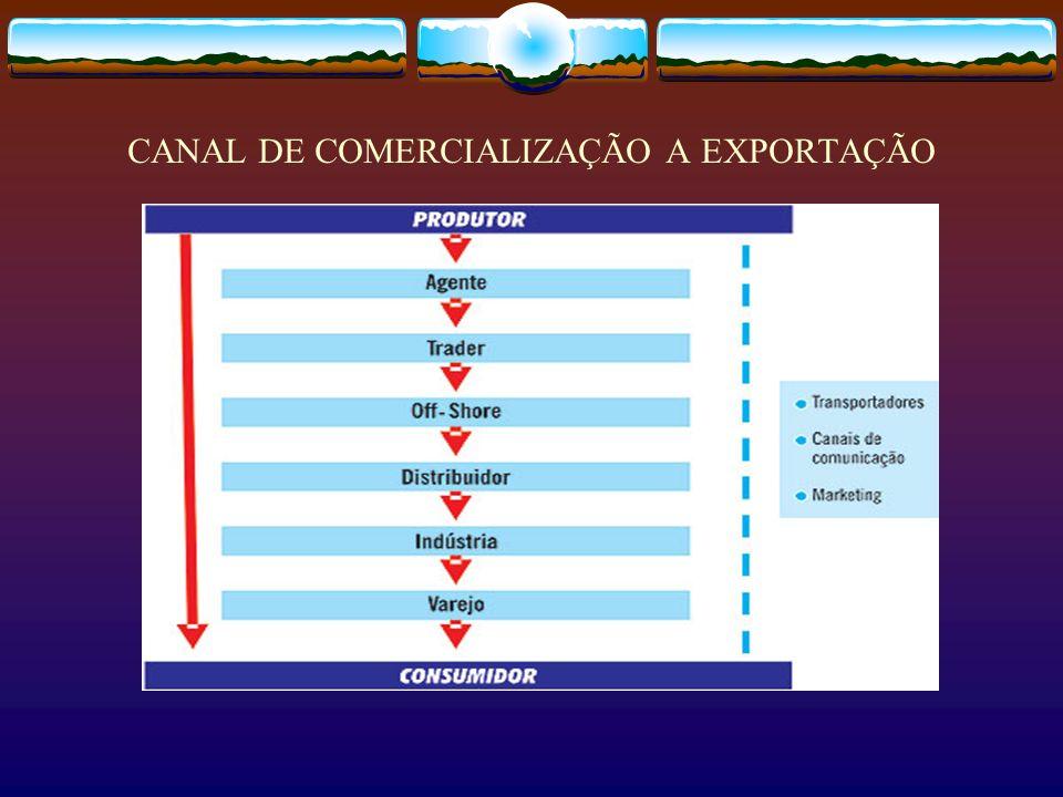 CANAL DE COMERCIALIZAÇÃO A EXPORTAÇÃO