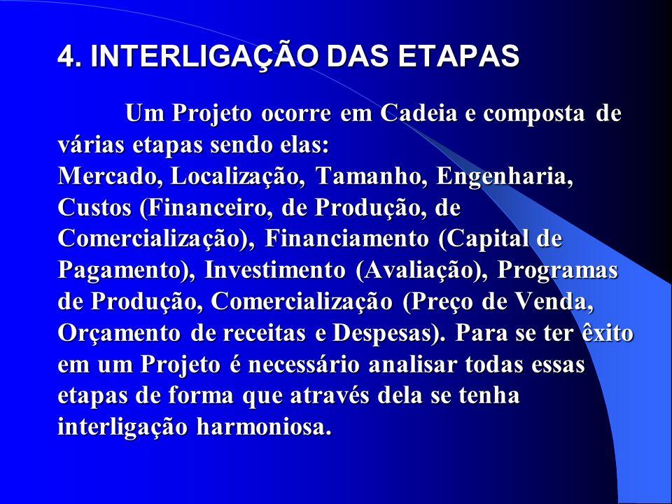 4. INTERLIGAÇÃO DAS ETAPAS