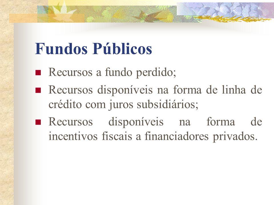 Fundos Públicos Recursos a fundo perdido;