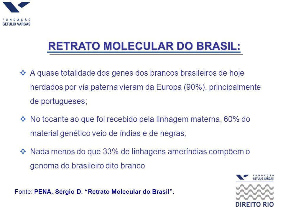 RETRATO MOLECULAR DO BRASIL: