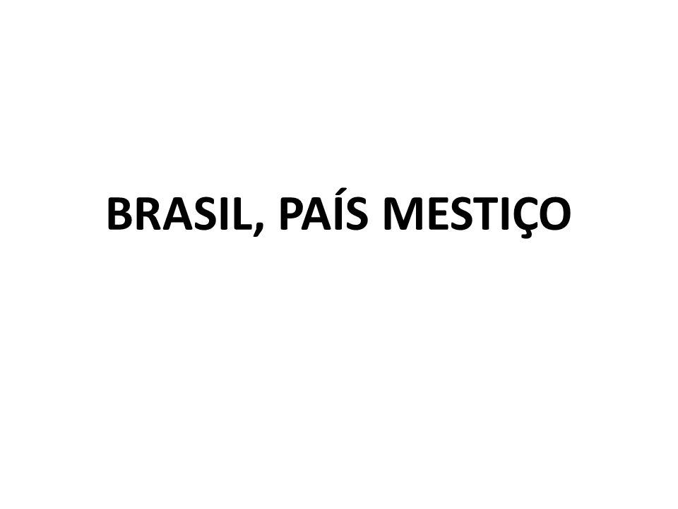 BRASIL, PAÍS MESTIÇO