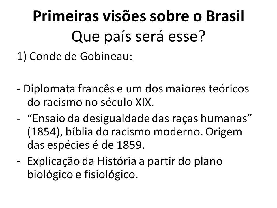 Primeiras visões sobre o Brasil Que país será esse