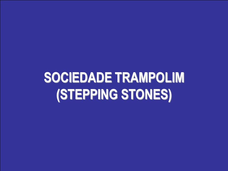SOCIEDADE TRAMPOLIM (STEPPING STONES)