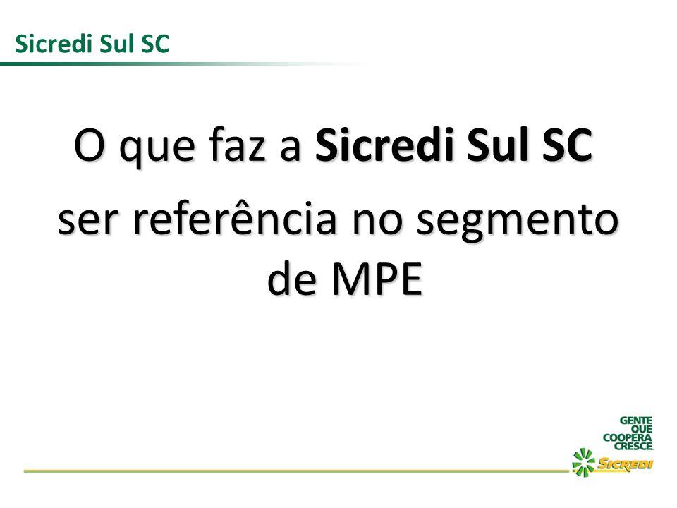 O que faz a Sicredi Sul SC ser referência no segmento de MPE