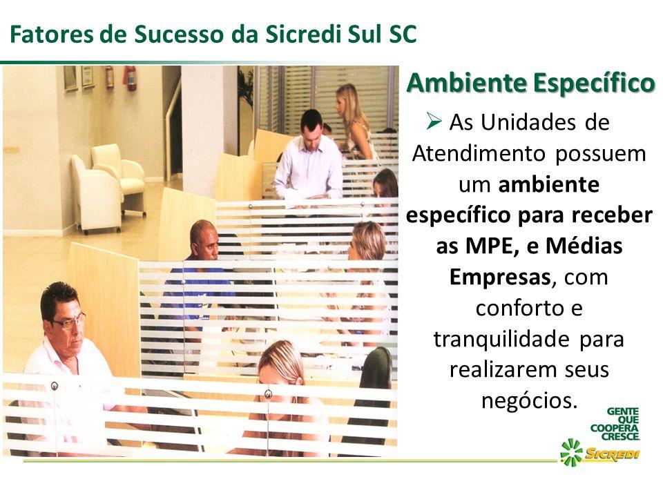 Ambiente Específico Fatores de Sucesso da Sicredi Sul SC