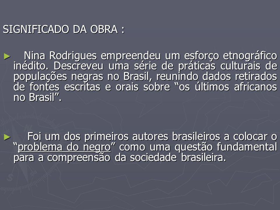 SIGNIFICADO DA OBRA :