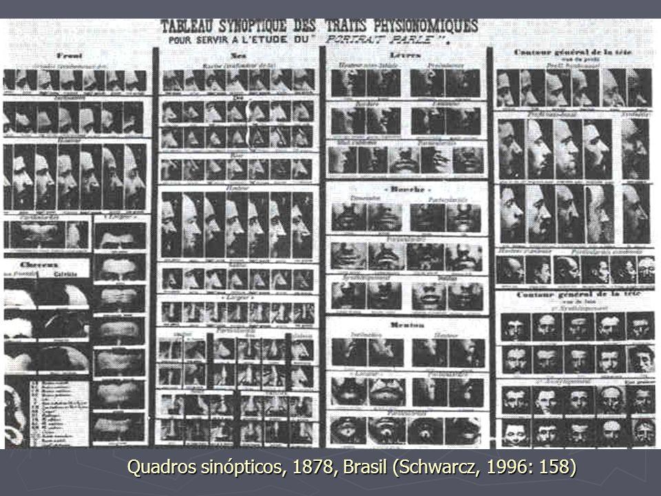 Quadros sinópticos, 1878, Brasil (Schwarcz, 1996: 158)