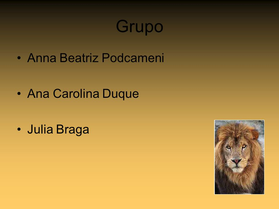 Grupo Anna Beatriz Podcameni Ana Carolina Duque Julia Braga