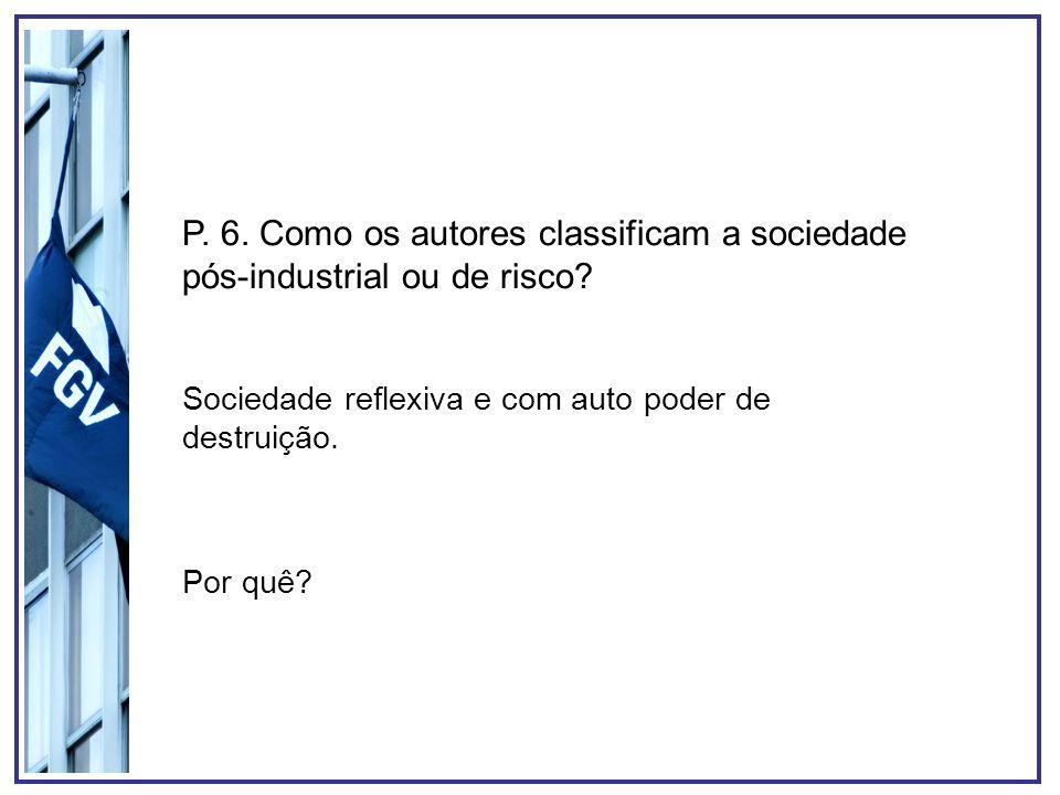 P. 6. Como os autores classificam a sociedade pós-industrial ou de risco