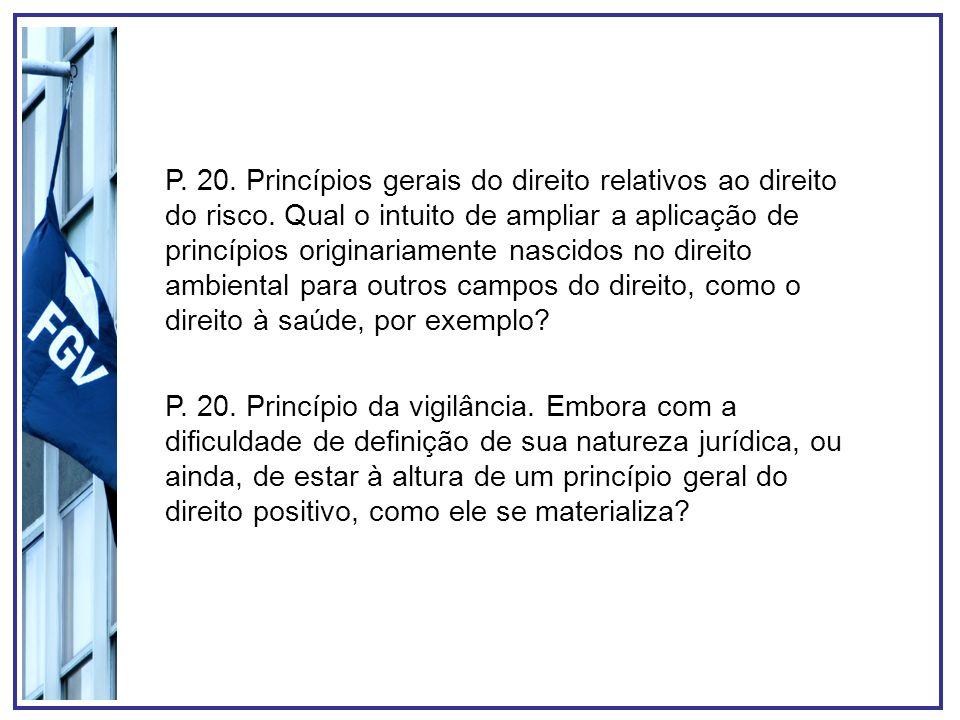 P. 20. Princípios gerais do direito relativos ao direito do risco