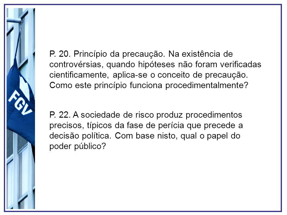 P. 20. Princípio da precaução