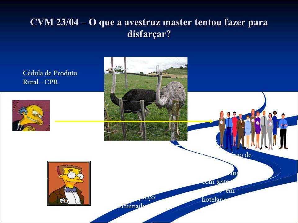 CVM 23/04 – O que a avestruz master tentou fazer para disfarçar