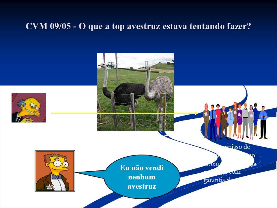 CVM 09/05 - O que a top avestruz estava tentando fazer