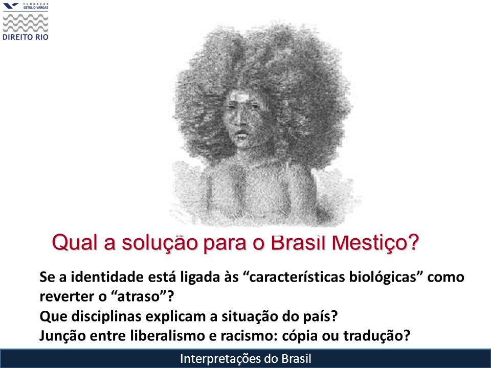 Qual a solução para o Brasil Mestiço