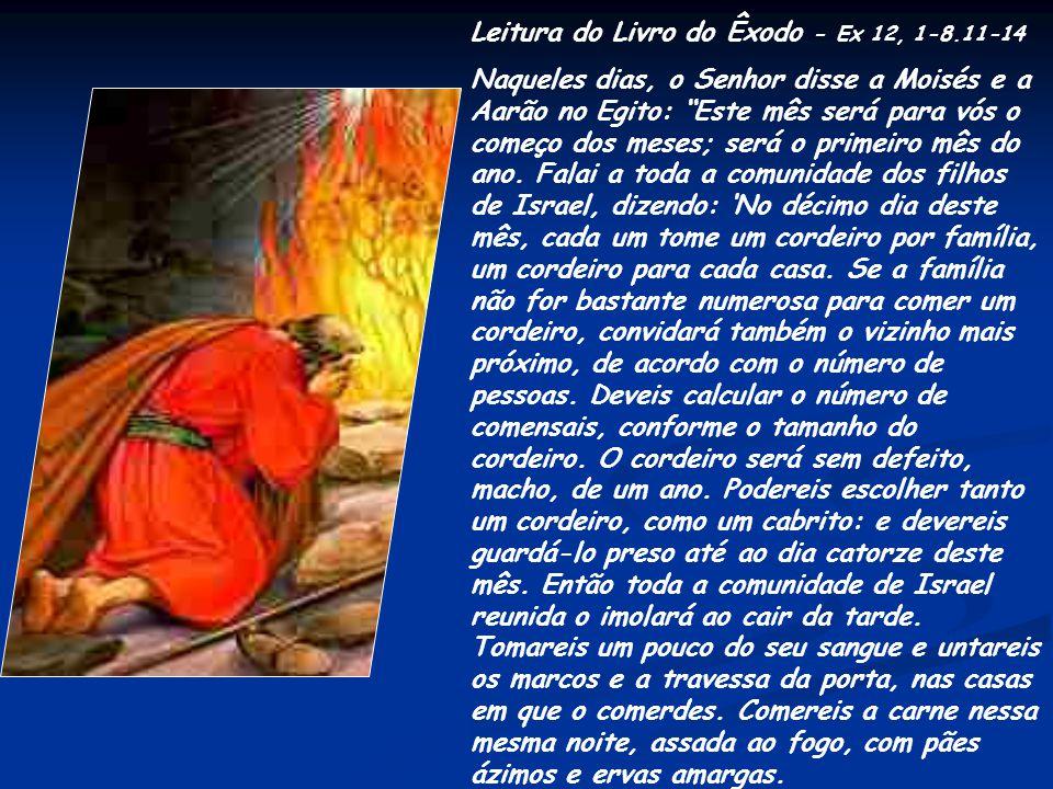 Leitura do Livro do Êxodo - Ex 12, 1-8.11-14