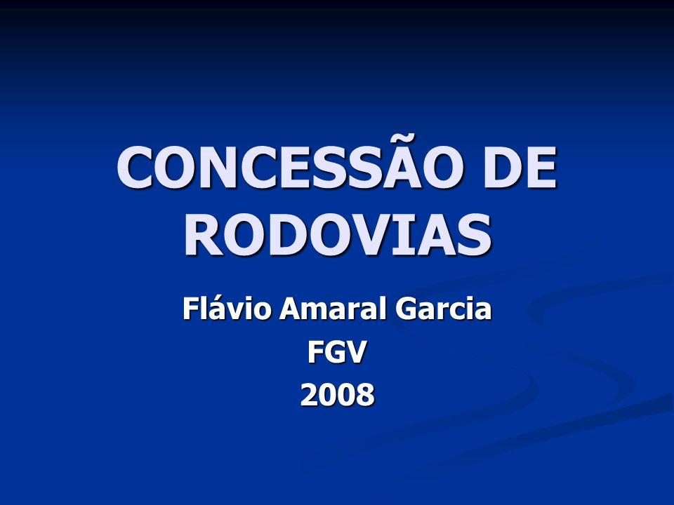 Flávio Amaral Garcia FGV 2008