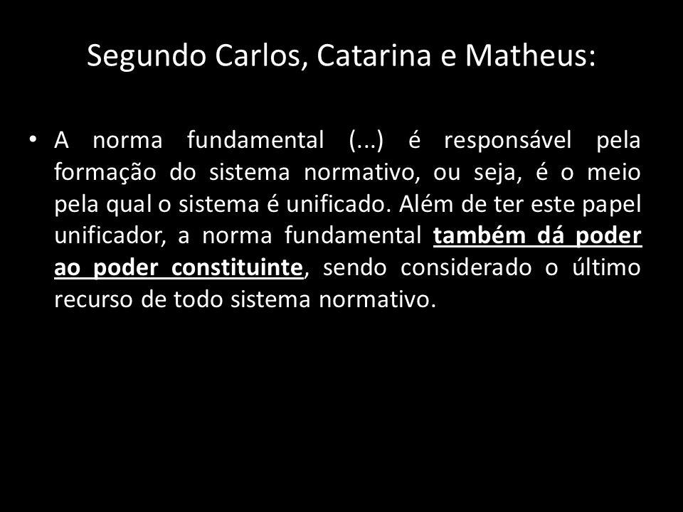 Segundo Carlos, Catarina e Matheus:
