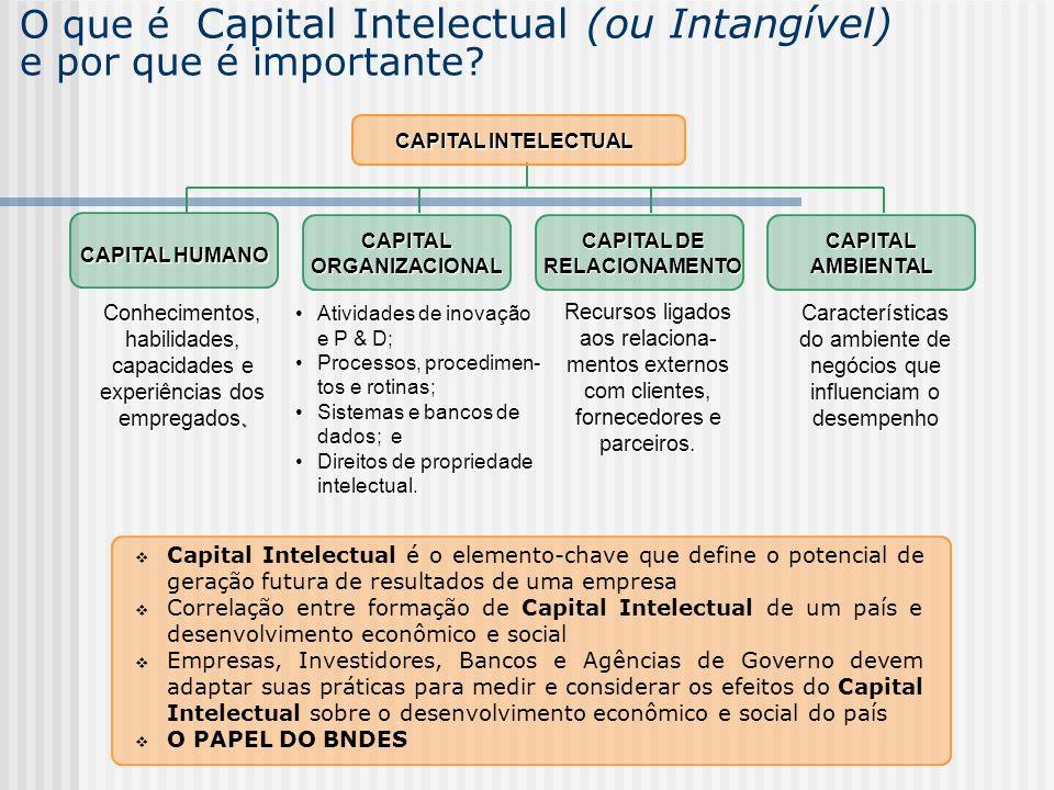 O que é Capital Intelectual (ou Intangível) e por que é importante