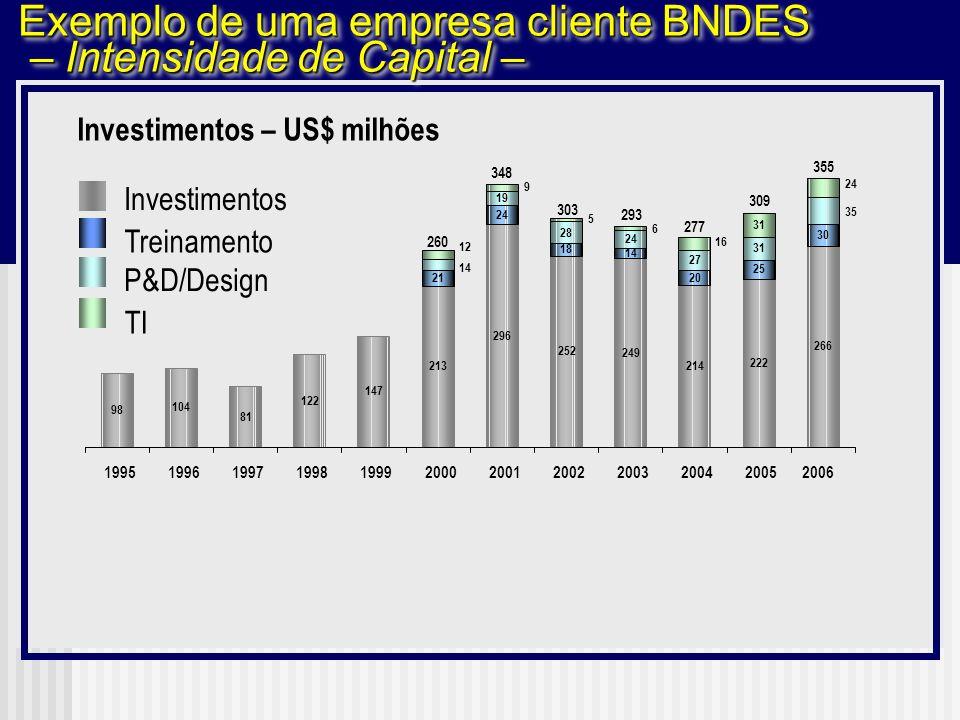 Exemplo de uma empresa cliente BNDES – Intensidade de Capital –