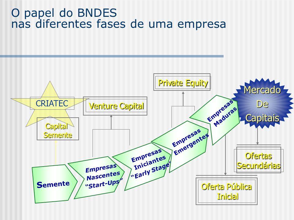 O papel do BNDES nas diferentes fases de uma empresa