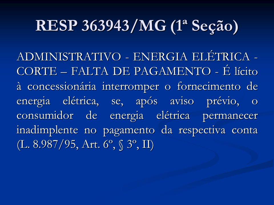 RESP 363943/MG (1ª Seção)