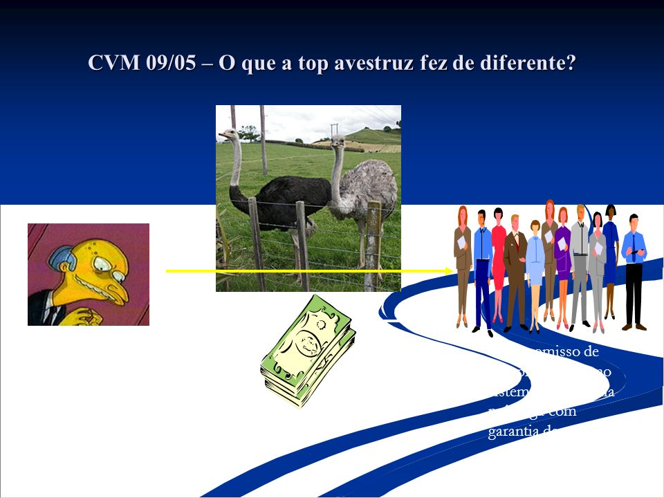 CVM 09/05 – O que a top avestruz fez de diferente