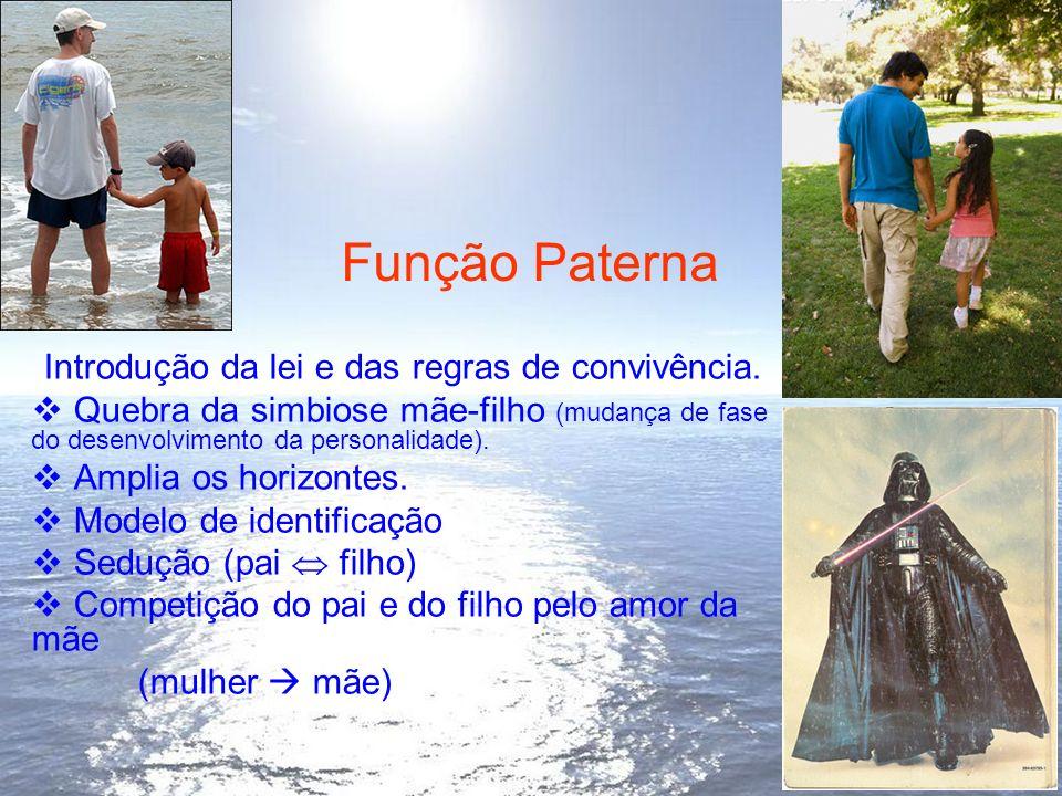 Função Paterna Introdução da lei e das regras de convivência.