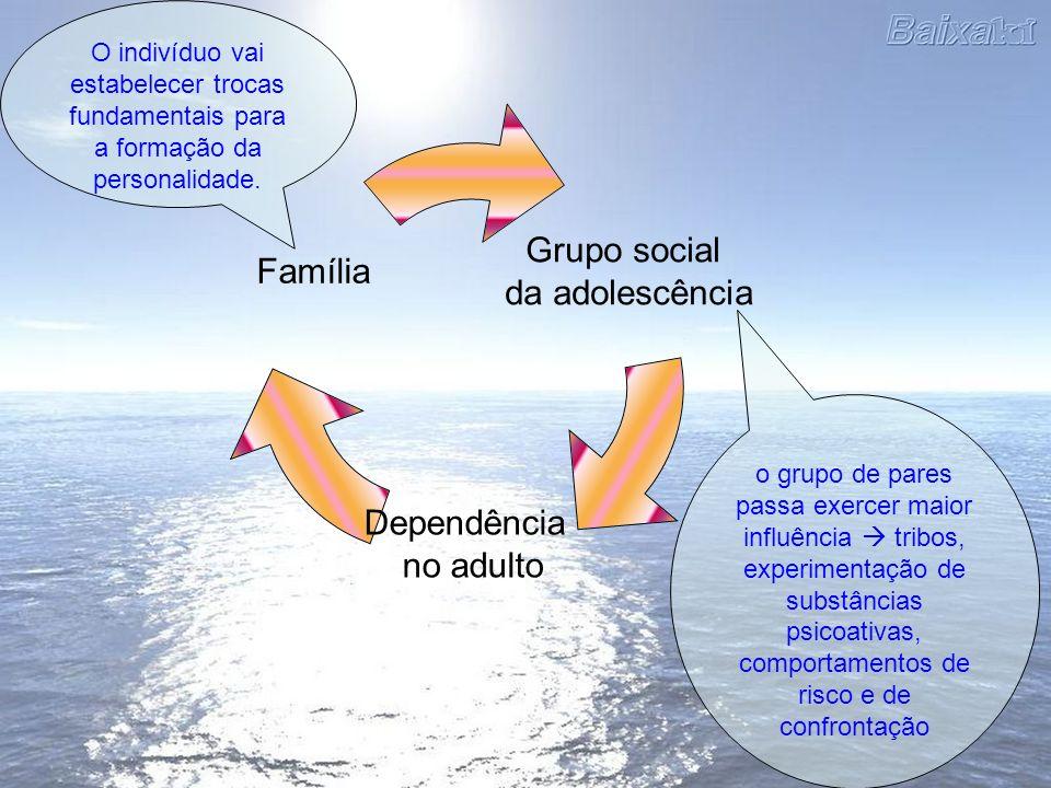 O indivíduo vai estabelecer trocas fundamentais para a formação da personalidade.