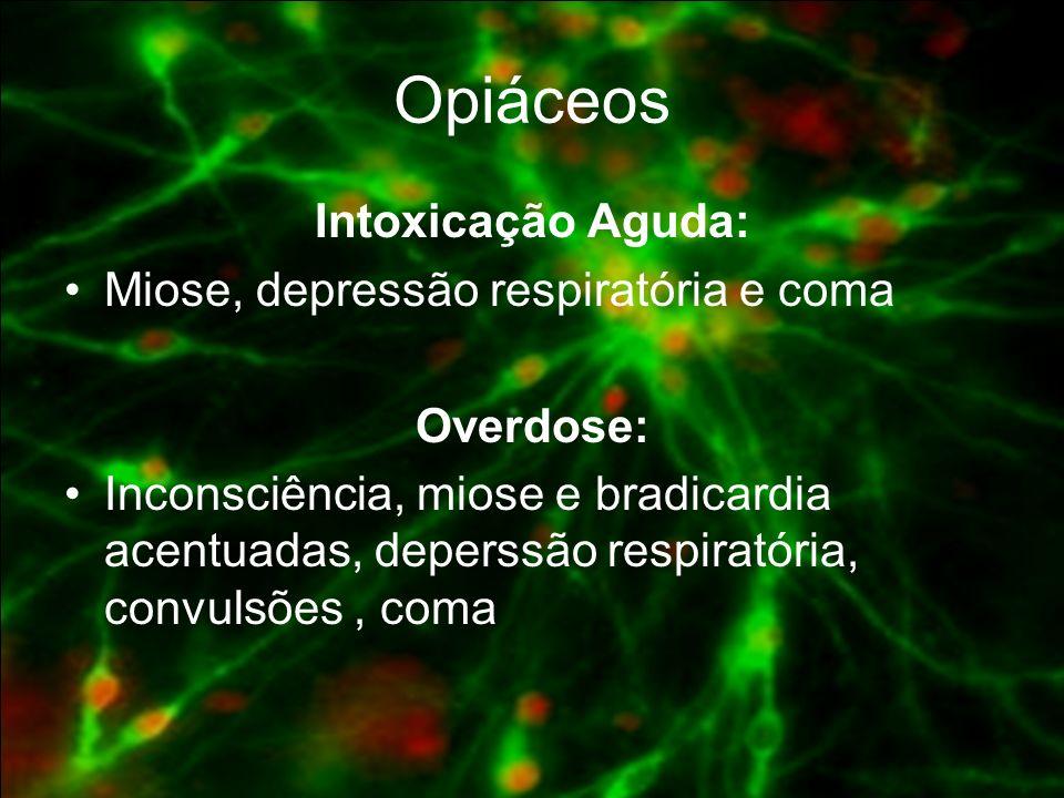 Opiáceos Intoxicação Aguda: Miose, depressão respiratória e coma