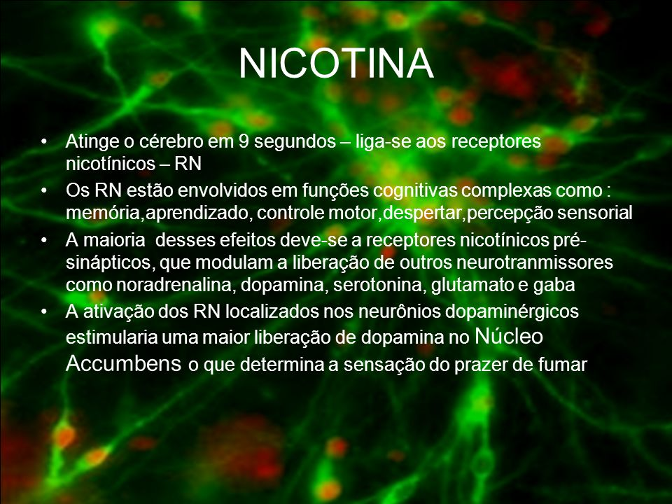 NICOTINA Atinge o cérebro em 9 segundos – liga-se aos receptores nicotínicos – RN.