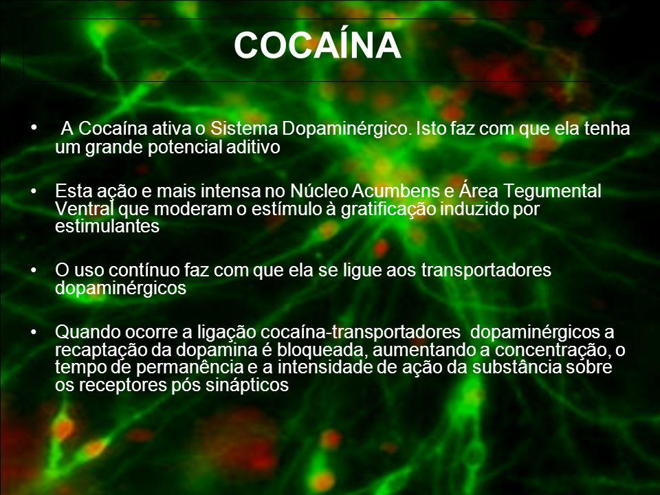 COCAÍNA A Cocaína ativa o Sistema Dopaminérgico. Isto faz com que ela tenha um grande potencial aditivo.