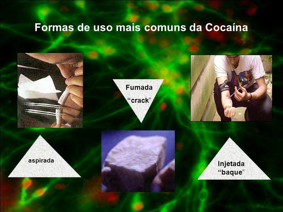 Formas de uso mais comuns da Cocaína