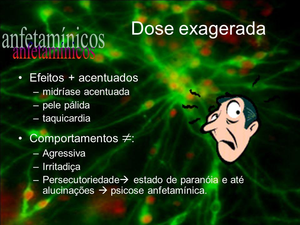 Dose exagerada anfetamínicos Efeitos + acentuados Comportamentos :