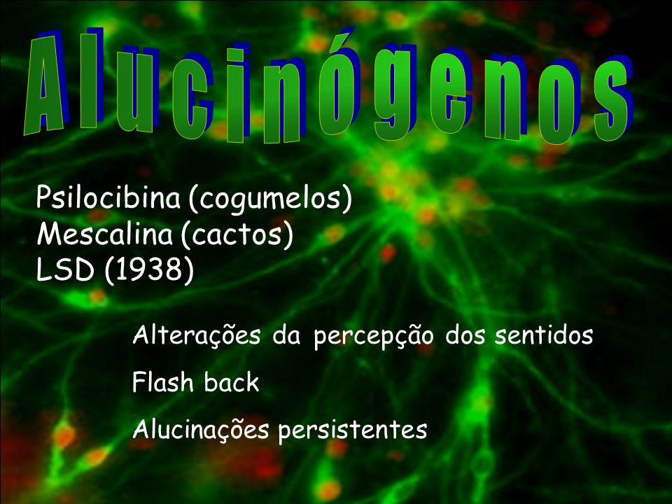Alucinógenos Psilocibina (cogumelos) Mescalina (cactos) LSD (1938)