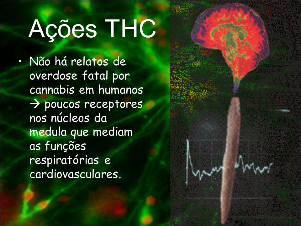 Ações THC
