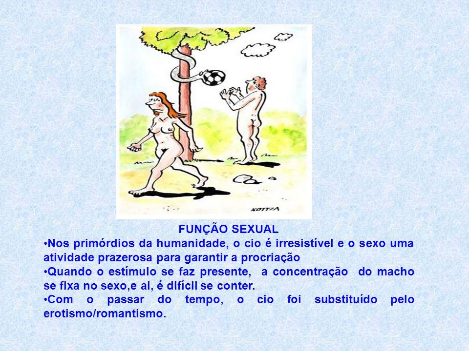 FUNÇÃO SEXUAL Nos primórdios da humanidade, o cio é irresistível e o sexo uma atividade prazerosa para garantir a procriação.