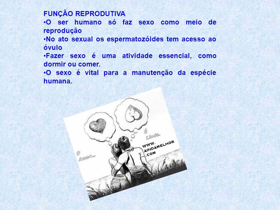 FUNÇÃO REPRODUTIVA O ser humano só faz sexo como meio de reprodução. No ato sexual os espermatozóides tem acesso ao óvulo.