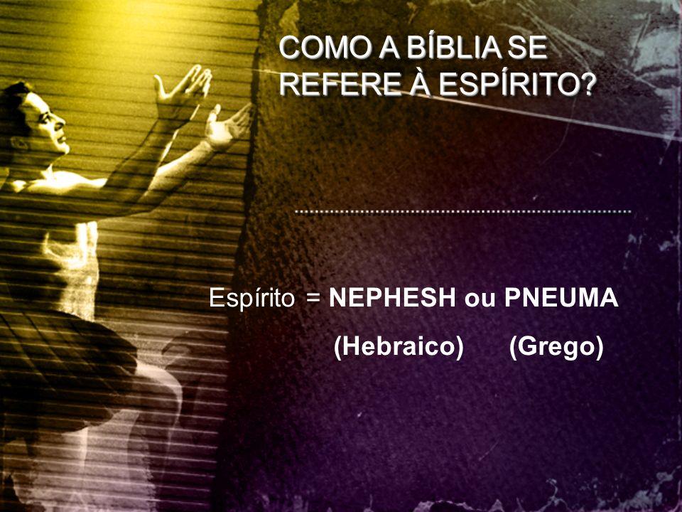 COMO A BÍBLIA SE REFERE À ESPÍRITO