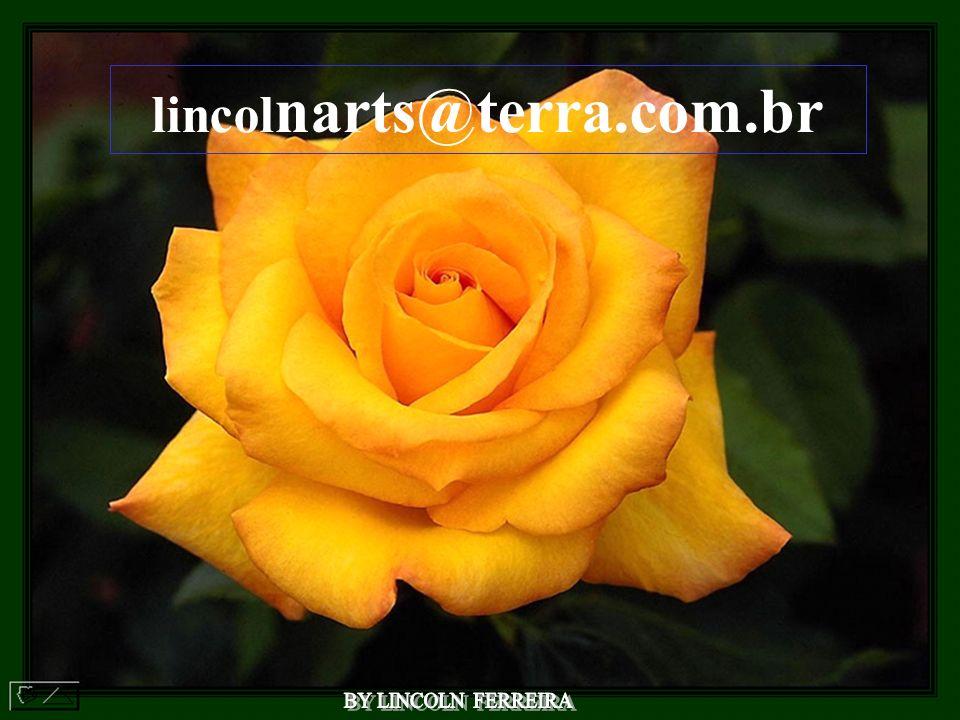 lincolnarts@terra.com.br BY LINCOLN FERREIRA