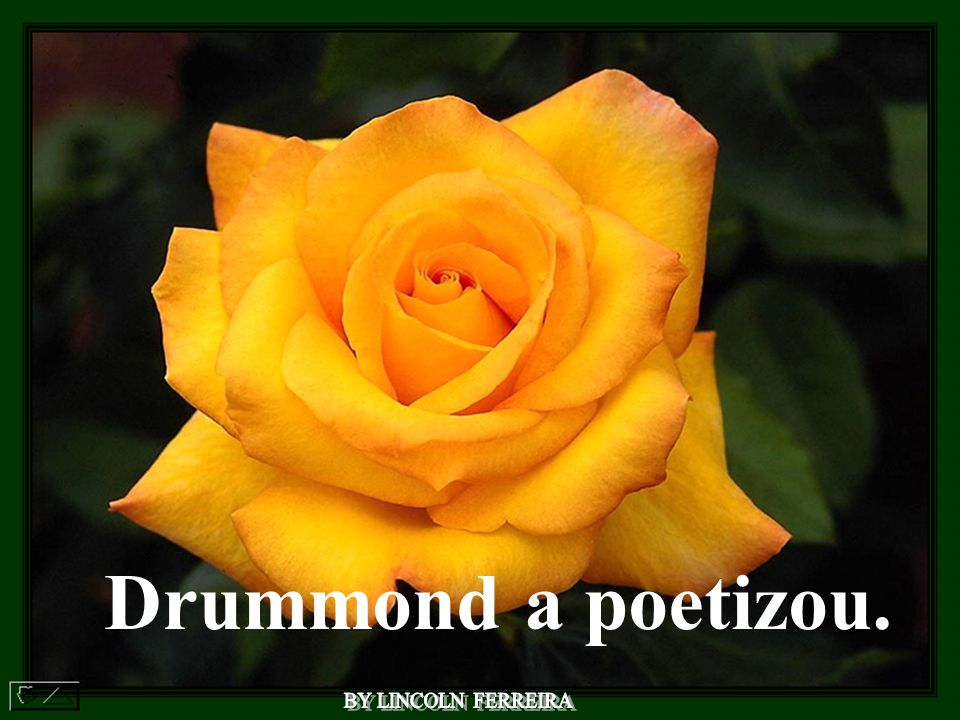 Drummond a poetizou. BY LINCOLN FERREIRA