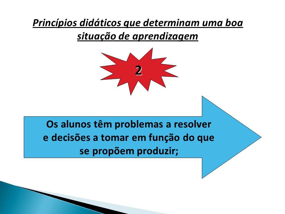 2 Princípios didáticos que determinam uma boa situação de aprendizagem