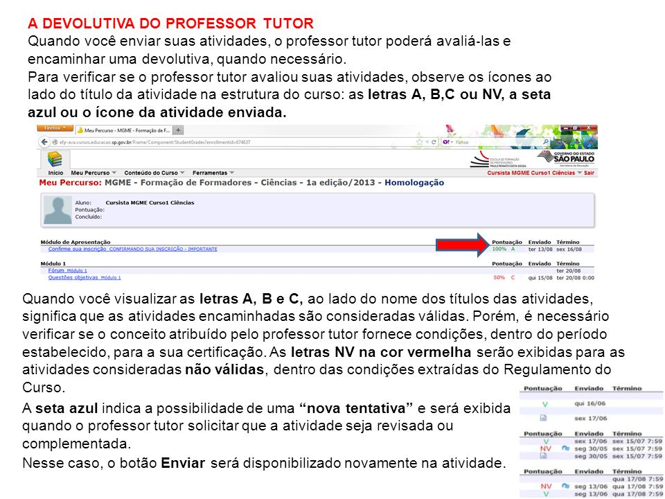 A DEVOLUTIVA DO PROFESSOR TUTOR