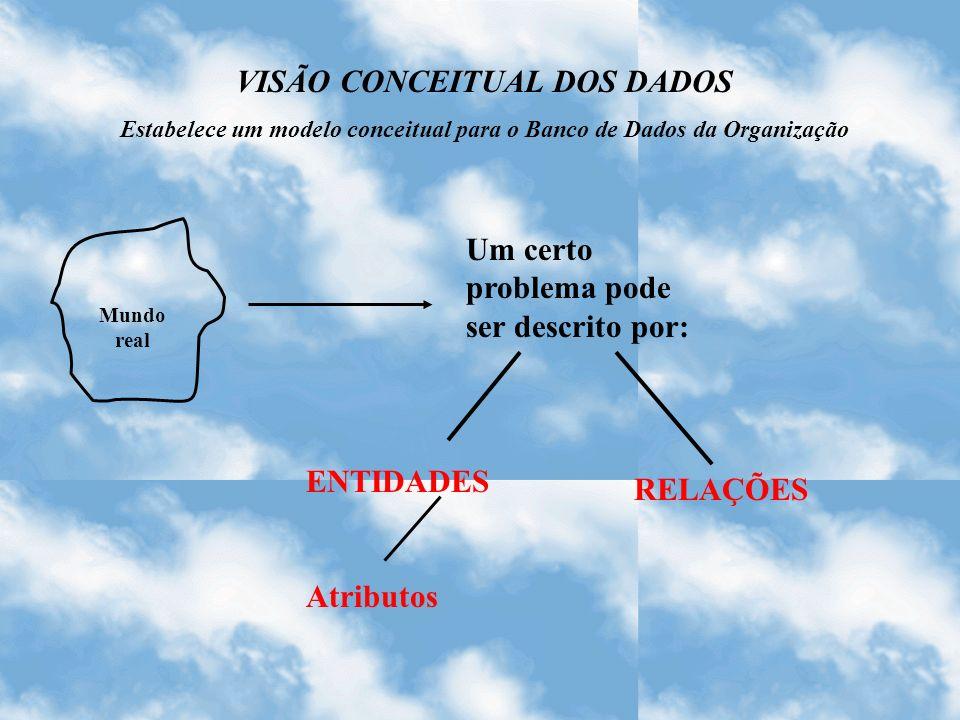 VISÃO CONCEITUAL DOS DADOS