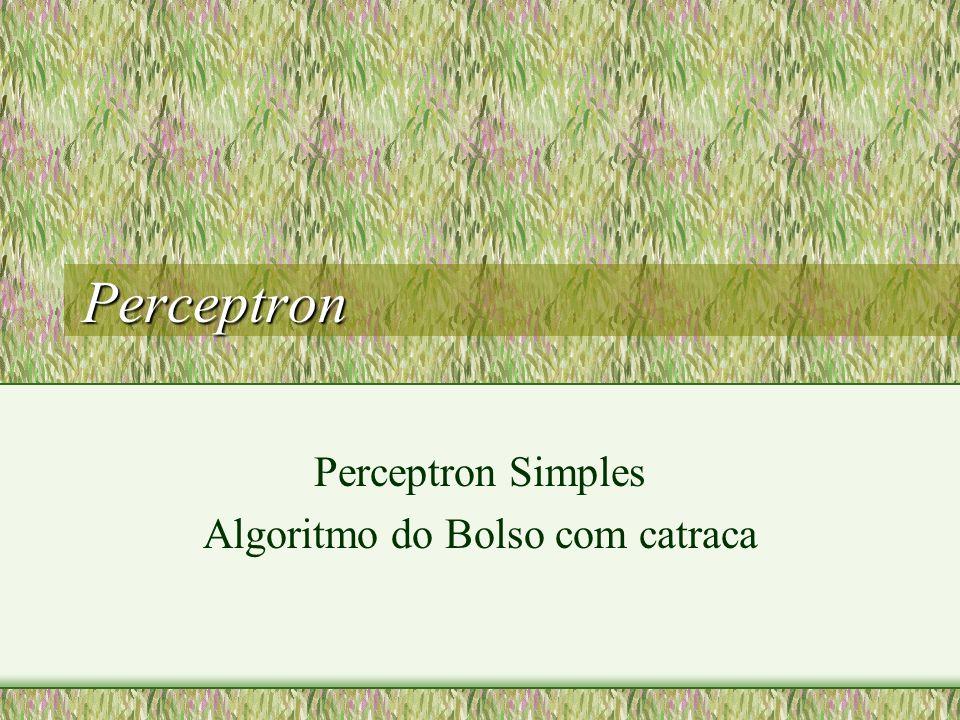 Perceptron Simples Algoritmo do Bolso com catraca