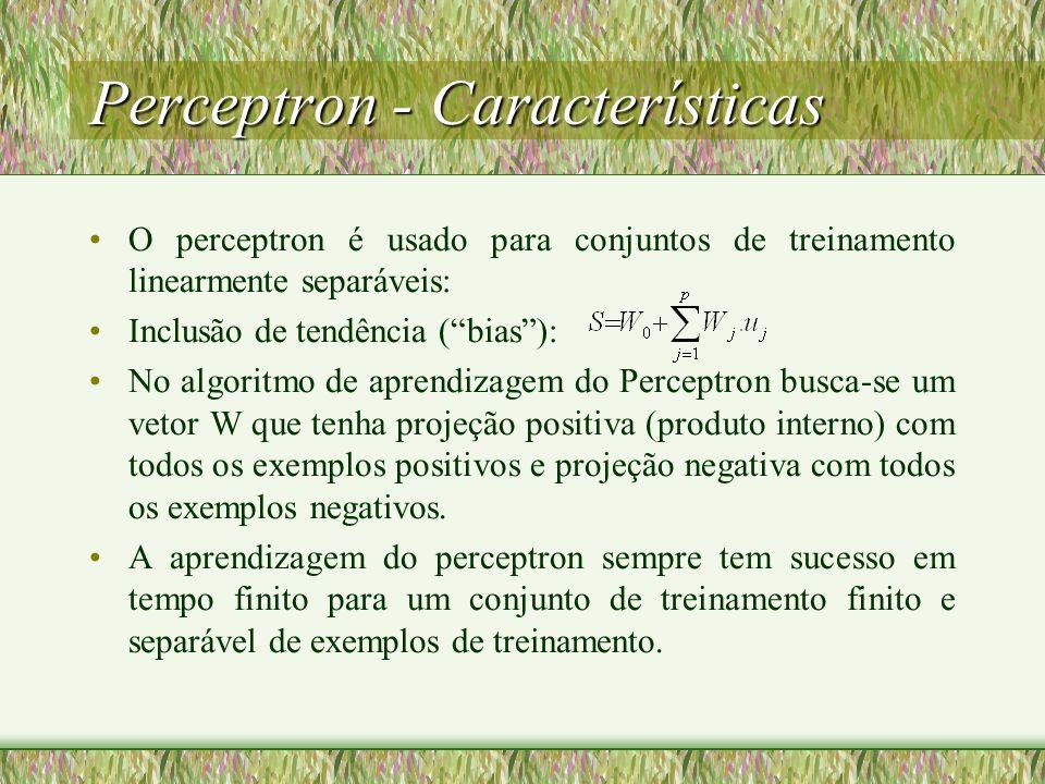 Perceptron - Características