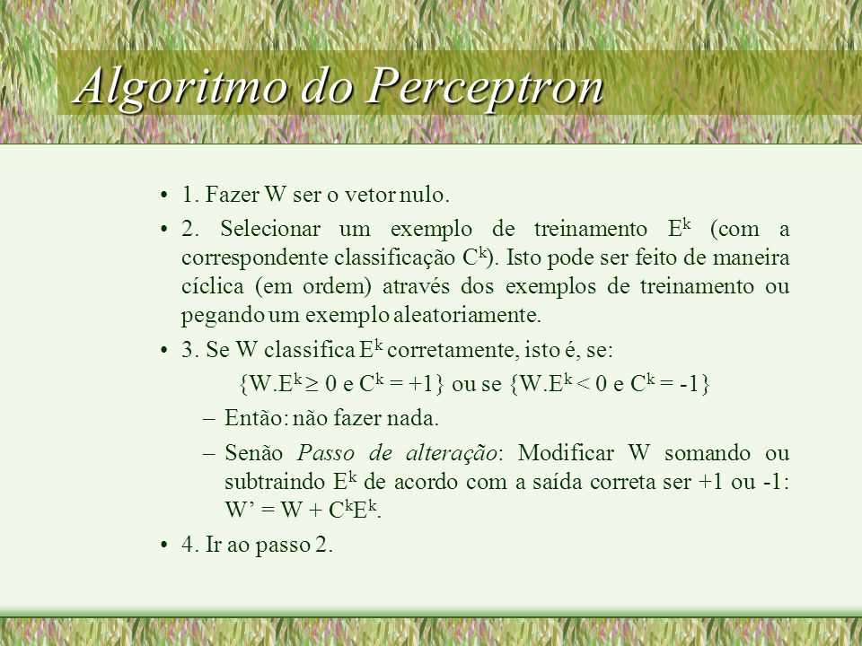 Algoritmo do Perceptron